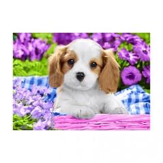 DIAMOND PAINTING KIT DOG IN PURPLE FLOWERS WD2451