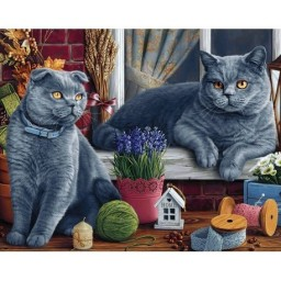 DIAMOND PAINTING KIT BRITISH SHORTHAIR CATS WD2483