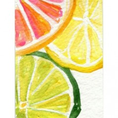 DIAMOND PAINTING KIT CITRUS FRESH WD281