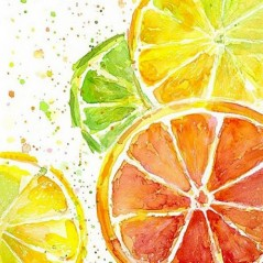 DIAMOND PAINTING KIT CITRUS MIX WD289