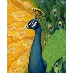 DIAMOND PAINTING KIT PEACOCK WD313