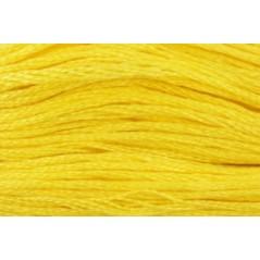 DMC Stranded Cotton Thread art. 117 col. 0307
