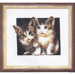Cross Stitch Kit Cat Curiosity A-103