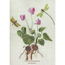 Creative needlework kit Botany-Red Cyclamen EM4023
