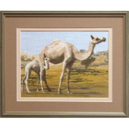 Cross Stitch Kit Camels art. 552
