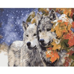 PAINT BY NUMBERS KIT A pair of wolves 40 x 50 cm КНО2434 Framed