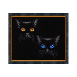 Cross Stitch Kit Shine of eyes S-011
