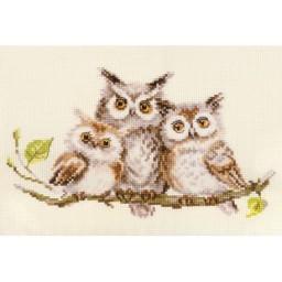 Cross Stitch Kit Owls art. 0-210