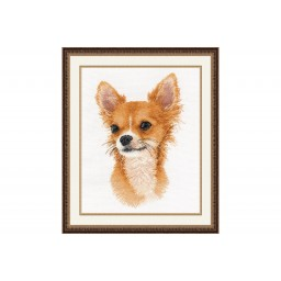 Cross Stitch Kit Little friend. Chihuahua art. 1001