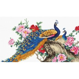 Cross stitch kit Two Peacocks B460