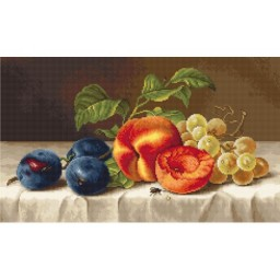 Cross stitch kit Still Life B592