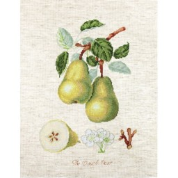 Cross Stitch Kit The Pear BA22420