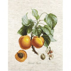 Cross Stitch Kit Apricot-Peche BA22450