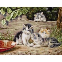 Gobelin kit Cats G556 Petit point